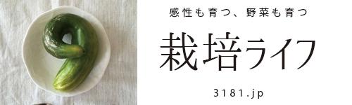 栽培ライフ(3181.jp) ー 野菜を育てると、感性も育つ