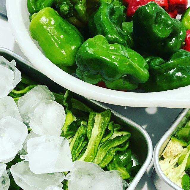 ピーマンがまだまだ大量に鈴なり状態。 もいいけれど、 の方が調理も手軽。氷に一晩漬けるだけで苦味が無くなるマジック! #大量消費  #オーガニック栽培  #有機栽培
