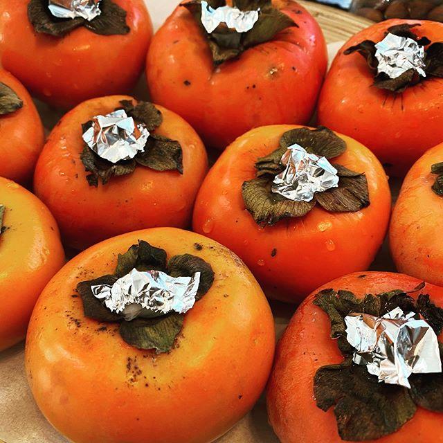 柿の追熟を止めて長く食べる方法→柿はヘタの切口から水分が抜けていくので、濡れたティッシュにアルミホイルでカバーをして保湿。すると水分の蒸発が遅れ熟すスピードが遅くなるのでゆっくりと食べることができます。お試しあれ。