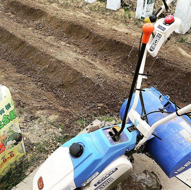 梅雨まであと2週間! ここ愛知では6/7頃が梅雨入りです。 耕運機を急いでかけて、コンポストで作った堆肥と有機肥料を入れて耕し、これから2週間土づくり。ギリギリセーフ!