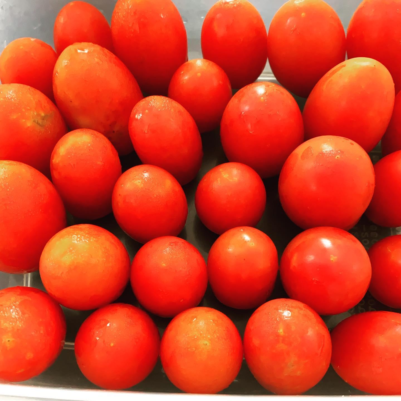 トマトに季節がやってきた。徐々に消費が追いつかなくなってきた…トマトソースかな…