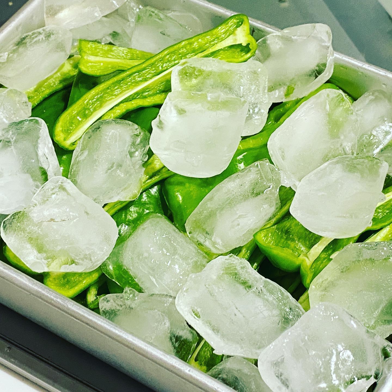 夏の定番「氷ピーマン」 今日も15個くらいの収穫。 しかし今年のピーマンはなぜか、長い。まるでシシトウのようだ…ん!?間違えた…!?